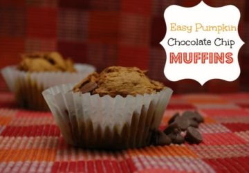 Recipe Corner: Easy 3 Ingredient Pumpkin Chocolate Chip Muffins 3pp Weight Watchers