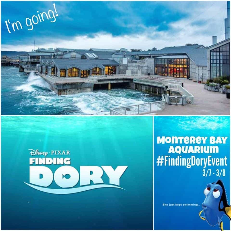 Follow Me As I Head To Monterey Bay Aquarium For A Special Finding Dory Event – March 7-8