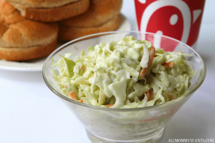 Easy Chick-fil-a Copycat Coleslaw Recipe