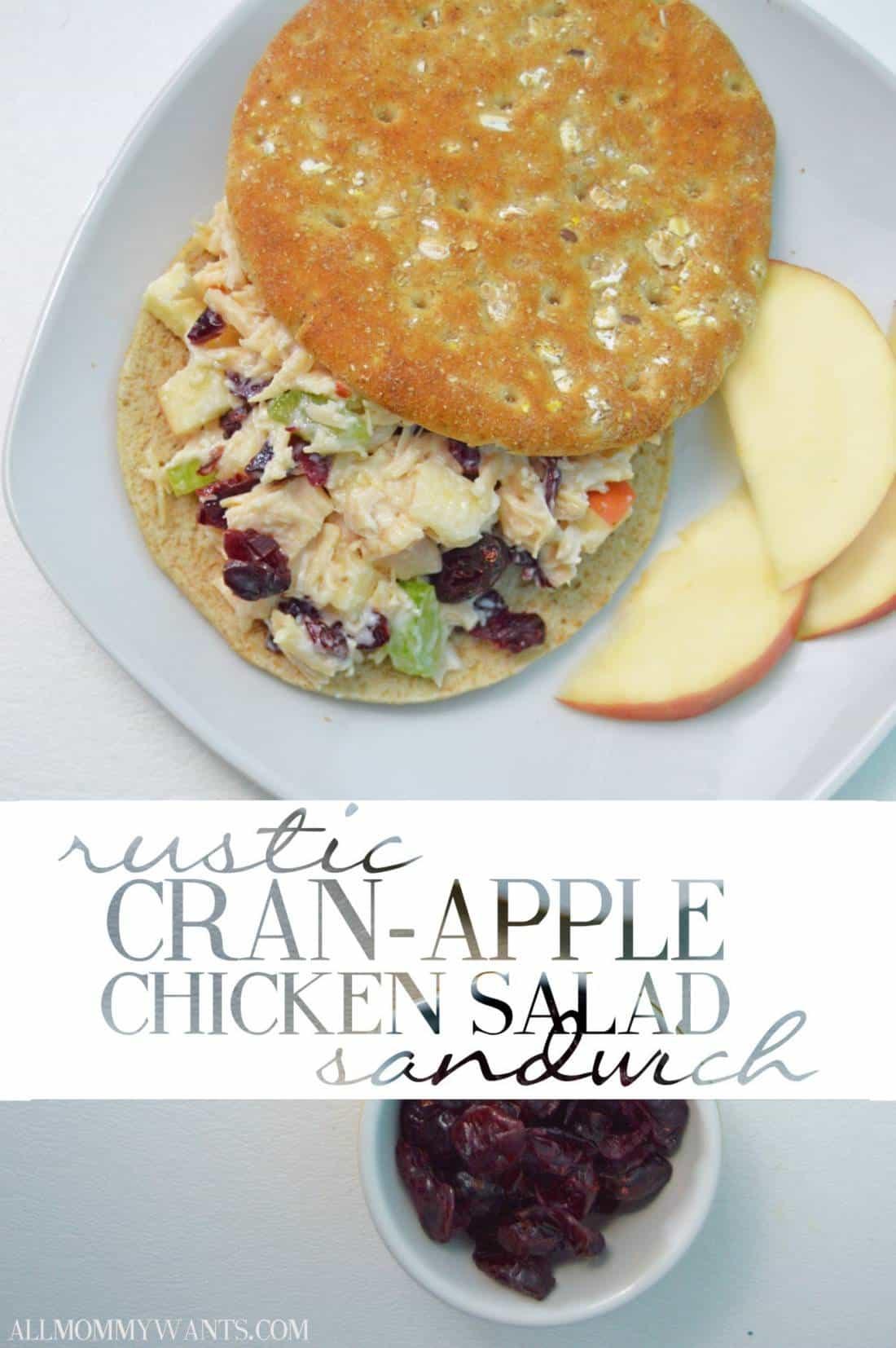 Recipe: Cran-apple Chicken Salad Sandwich