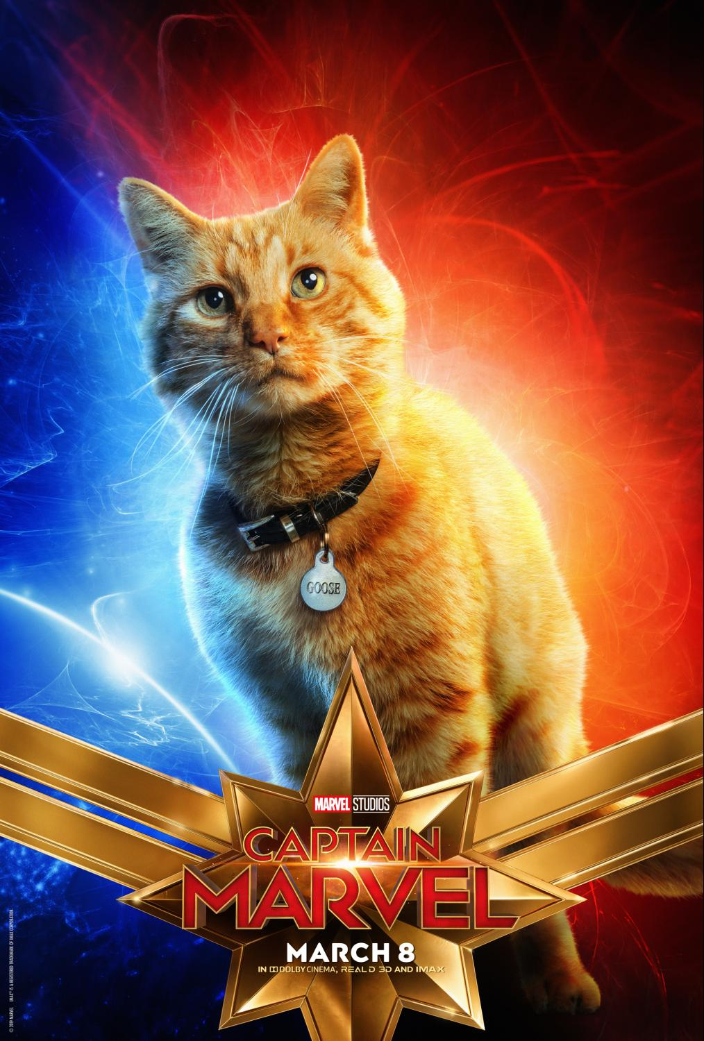 Captain Marvel's Cat Gets His Own Character Poster (see Them All Here)