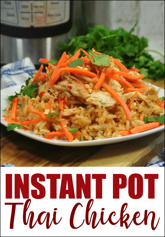 Instant Potthaichicken Rice Bowls